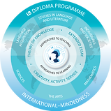 DP Programme Model.png