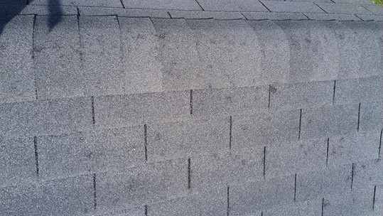 Hail damaged shingle in need of replacement