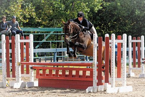 Alex_Spizziri_-Children%25C3%25A2%25C2%2580%25C2%2599s_Hunter_Horse_14and_under_%252C_Training_Schoo