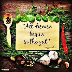Beat the Bloat - Rebalancing Your Gut
