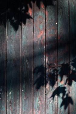 julie-feuillaisonurbaine-01