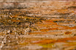 dfall-abstractionpicturale-08