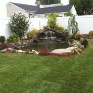 backyard oasis