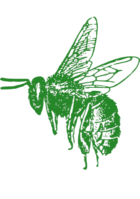 Enviro Bee