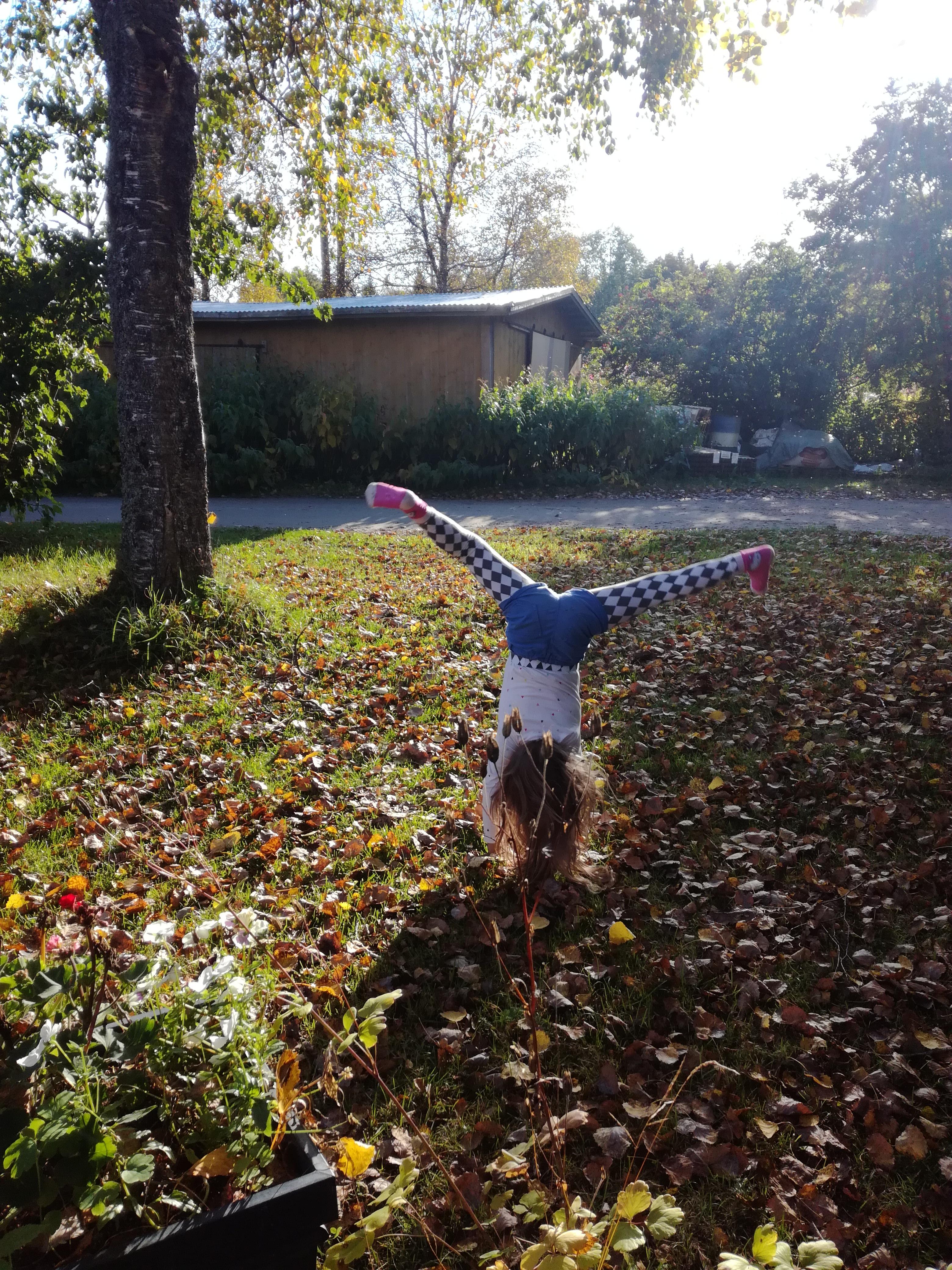 lasten fysioterapia, kärrynpyörä
