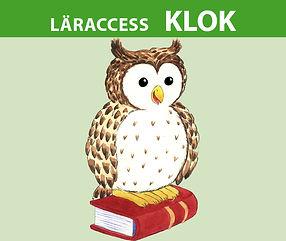 laraccessKlok_uggla.jpg