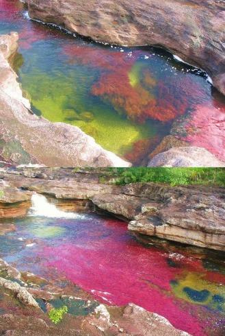 The Seven Color River, Colombia_edited.j