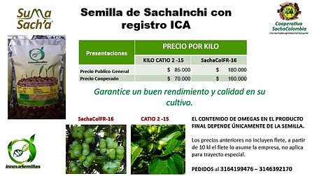 SachaInchi seeds.jpg