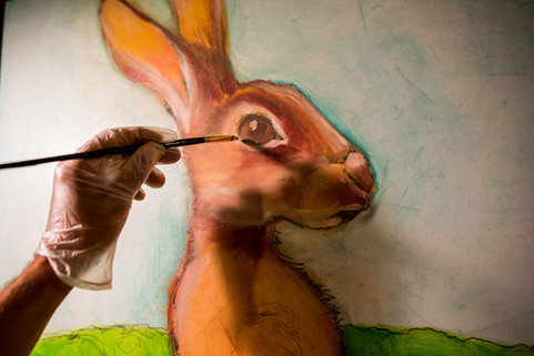 Giant Brown Hare