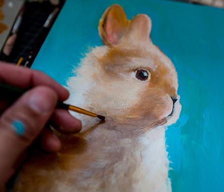 Little Fluffy Hare