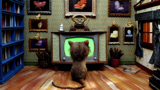 TV For Cats
