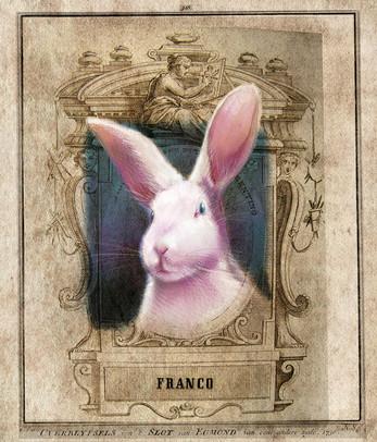 Franco the Bunny