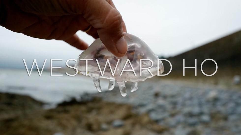 Westward Ho, Devon