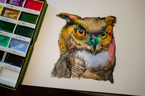 Bedtime Owl