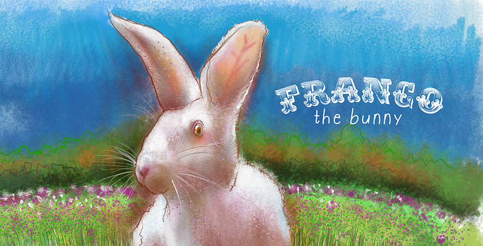 Franco the Bunny in the Grass