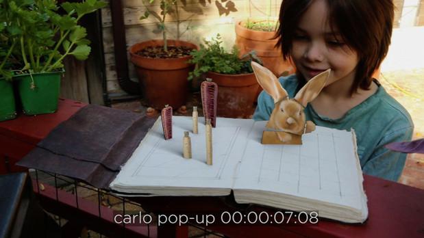 Carlo in a Book