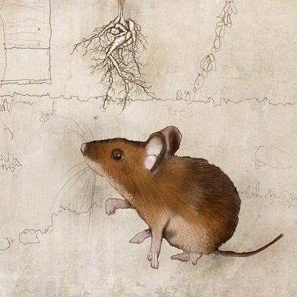 草の中のマウス