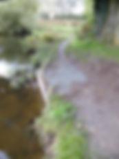 Path Repair 1.jpg
