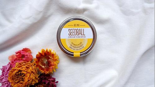 Seedball Bee Mix
