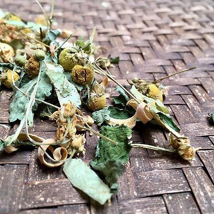 All of The Singing Leaf herbal blends ar