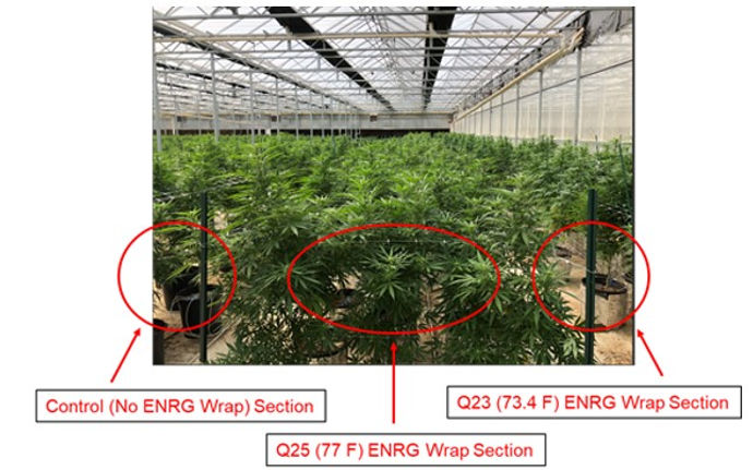 Greenhouse Grow - ENRG Wrap and Control