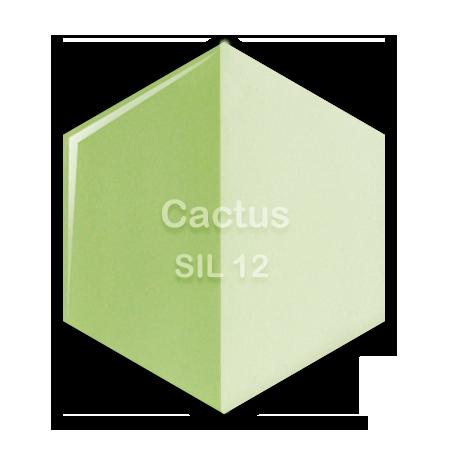SIL-12 Cactus