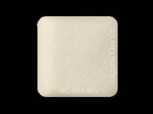 #65  WC609