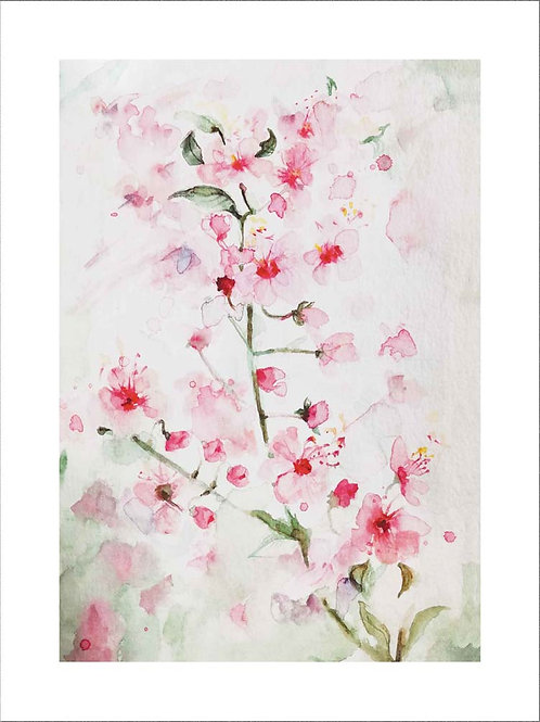 """Sakura"" by JENEM Fine Art Print"