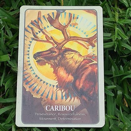Card 3 - 23 Feb