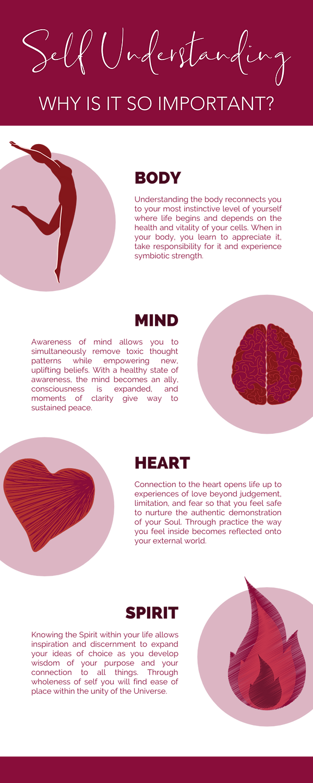 Nadora web infographic.png