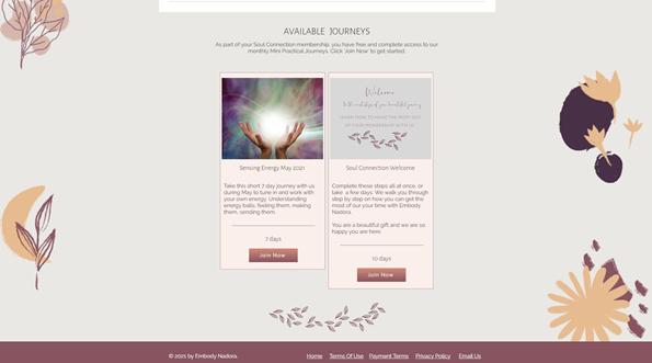 Online Mini Courses