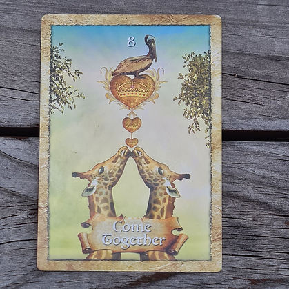 Card 3 - 2nd Feb