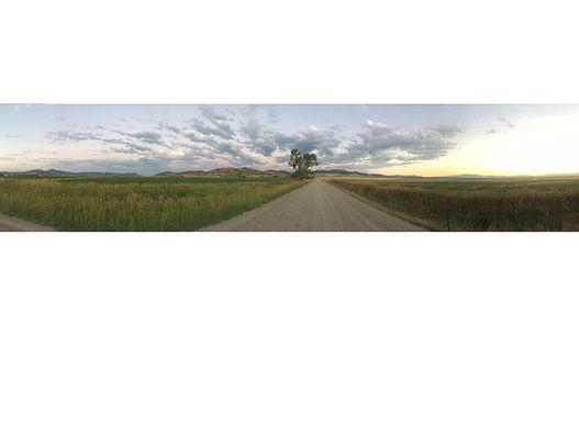 mayflower road pic for fellows website.j