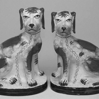Bitmap grumpy dogs.png