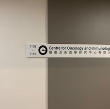 Centre for Oncology and Immunology (Coinno)