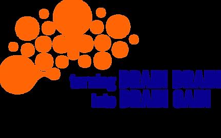 Brain drain_logo.png