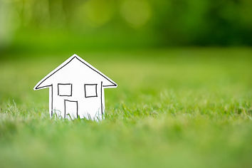 New paper house in grass.jpg