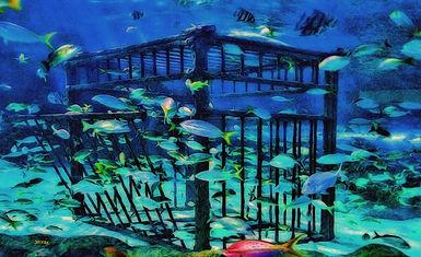 diver cage, fish, sand, ocean floor, blue