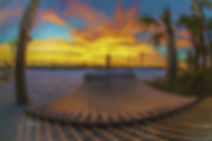 palm tree, sunset, sandn beach, hammock, Florida