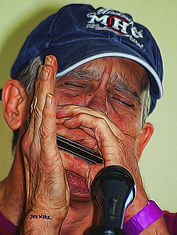 harmonica, harp, blues, musician, hands