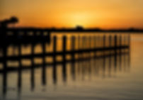 sunset, ocean, pier, palm, Florida