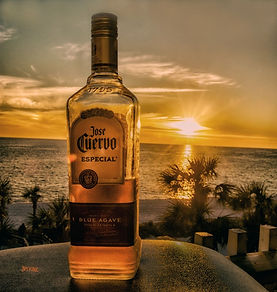 Jose Cuervo tequila, palm trees, ocean, set