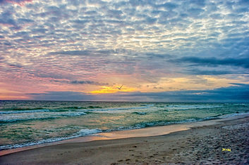 sun set, seagull, beach, blue sand, clouds