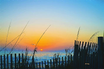 Sea oats, sand fence ocean sunset horizon