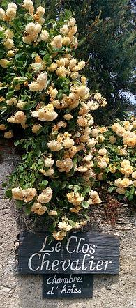 L'Anjou le pays de la rose