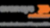Avansys Logo 6pm 8.6.20_FINAL.png
