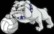 bulldogsports2017vb-e1527608559905_edite