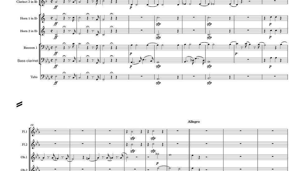 Mozart: Magic Flute Overture arranged wind dectet