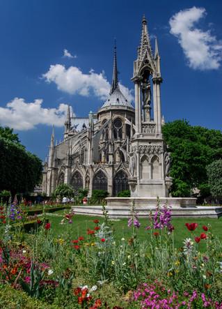 Notre Dame Spring - Paris, FR