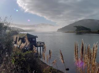 Jenner Bay, California